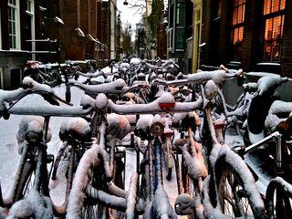 Bailey Alexander's fotos of Amsterdam