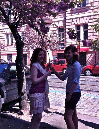 Bailey Alexander's fotos of Prague